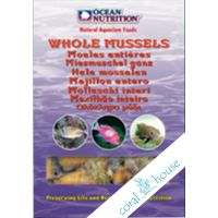 Ocean Nutrition Frozen Whole Mussel 100g - Małże